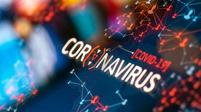 Finance ministry hopes economic recovery despite third corona wave