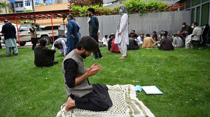 Afghan translators urge US not to 'leave us behind'