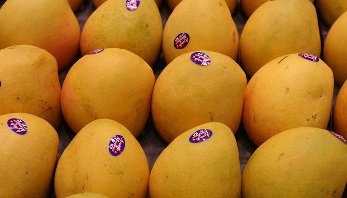 Pakistani mangoes have big demand in global markets