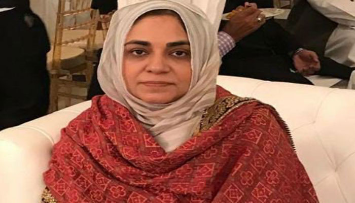 Education of 2.3m children in Sindh discontinued after grade 5, says PTI MPA