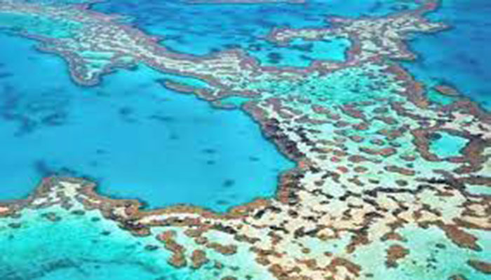 Great Barrier Reef: China denies politics behind Unesco move