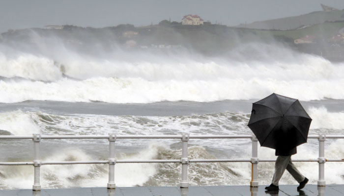 Deadly summer of extreme weather around the world