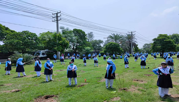 In less than a minute: Pakistan makes world record by planting over 50,000 saplings