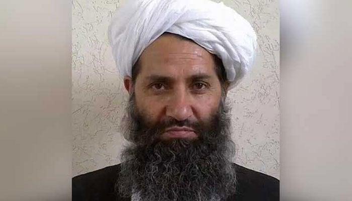 Spotlight on Mullah Haibatullah