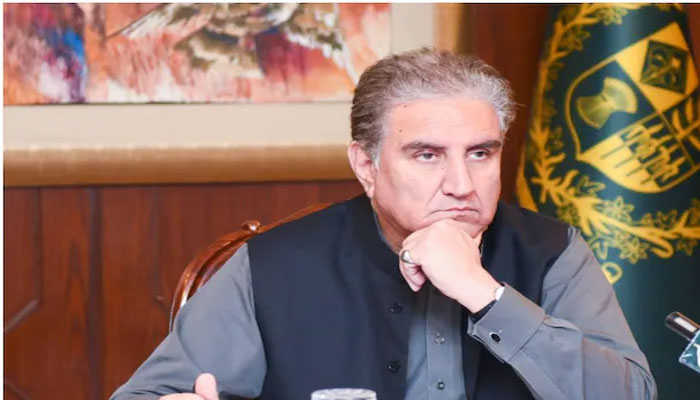 Foreign Minister Shah Mehmood Qureshi. File photo