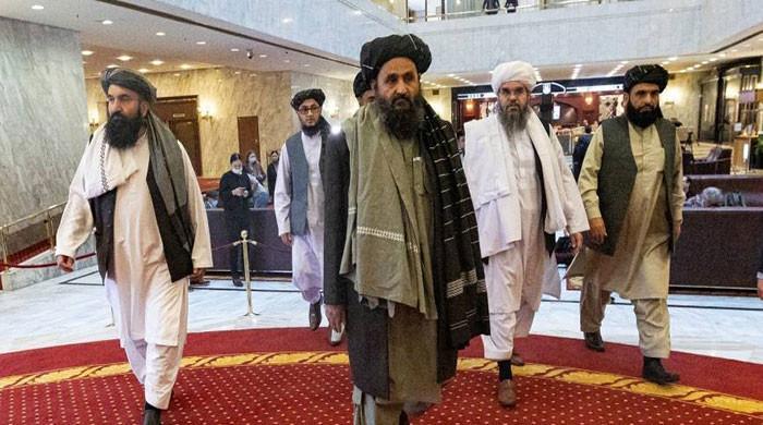 Taliban victory in Afghanistan: Congressmen advise stern stance towards Pakistan