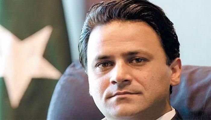 SAPM Tabish Gauhar 'quits'