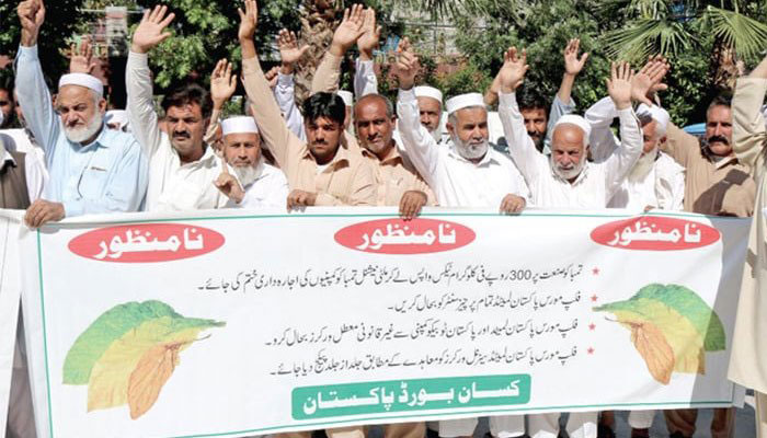 Swabi tobacco growers end protest