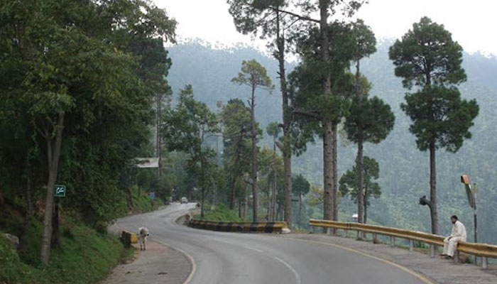 PM's strict action to avert human, environmental catastrophe in Murree