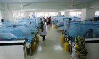 Number of dengue fever patients in twin cities registering sharp increase