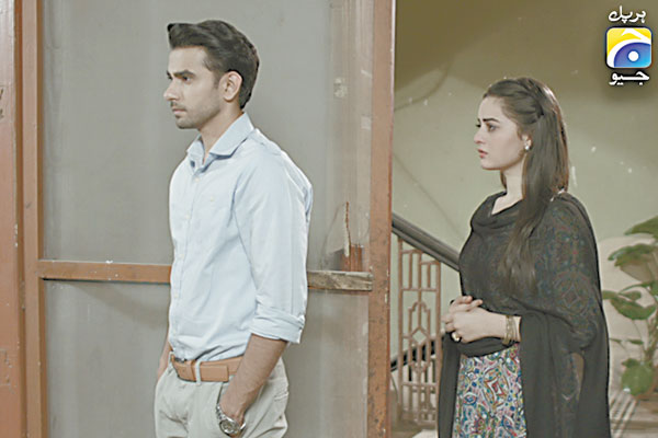 Will Zainab and Ali's love story find success amidst troubled family relationships? Only time will tell...