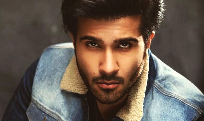 Feroze Khan to feature in two drama serials next year