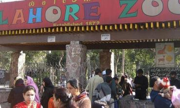 A case for Lahore Zoo
