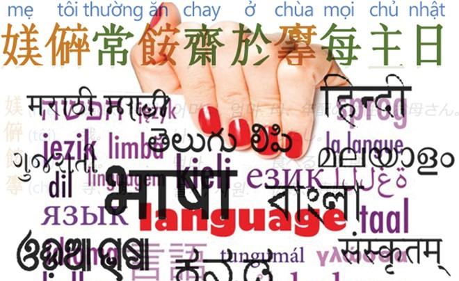 The language link