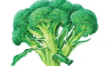 Power food: veggies to keep you healthy this winter