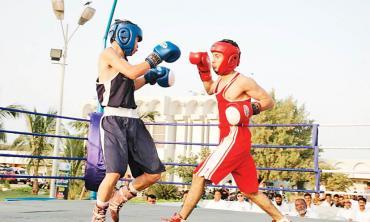 Boxing standard declining