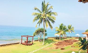 The Endless Summer of Sri Lanka