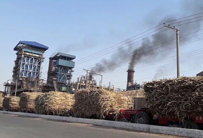 Bitter reality of sugar industry