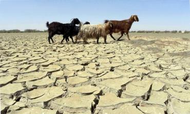 Of 18 drought-hit districts