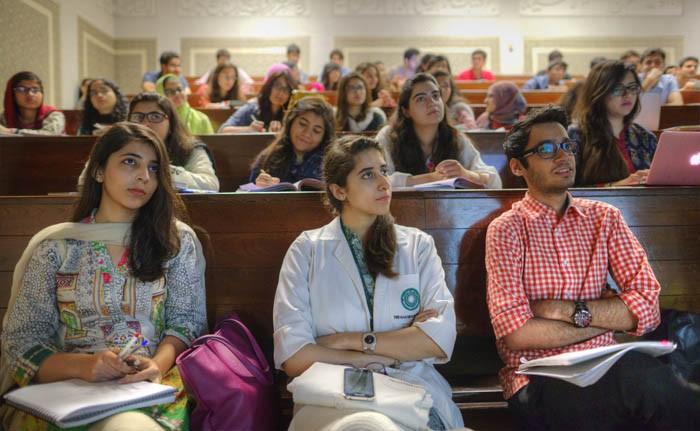 Selecting an undergraduate discipline