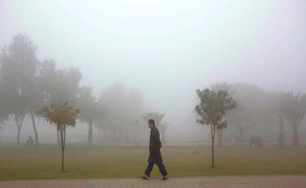The business of fog