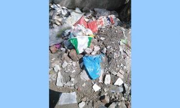 The menace of plastic bags