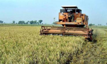 Pakistan's agriculture sector and CPEC