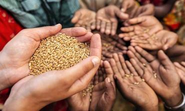 No end to hunger by 2030