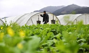 How China won the war on rural poverty