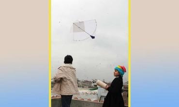 The kite-flying safety