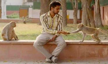 Eeb Allay Ooo!: The city is a zoo