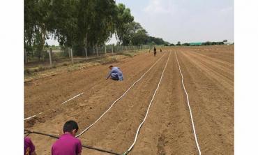 Responsive drip irrigation