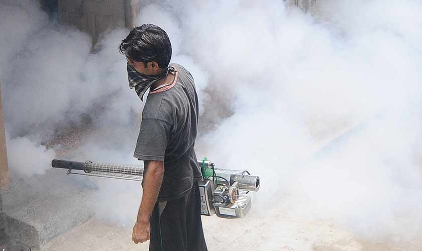 The government must identify areas with a history of high concentration of dengue cases and relaunch the fumigation drive in order to reduce the number of infections each year.