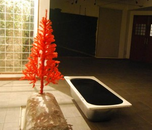 Julius John  (Site specific installation) View 6