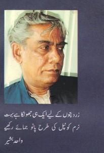Wahid Bashirq