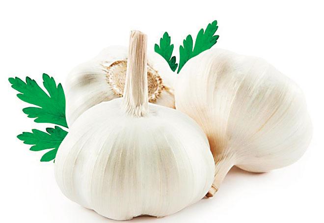 Health_garlic