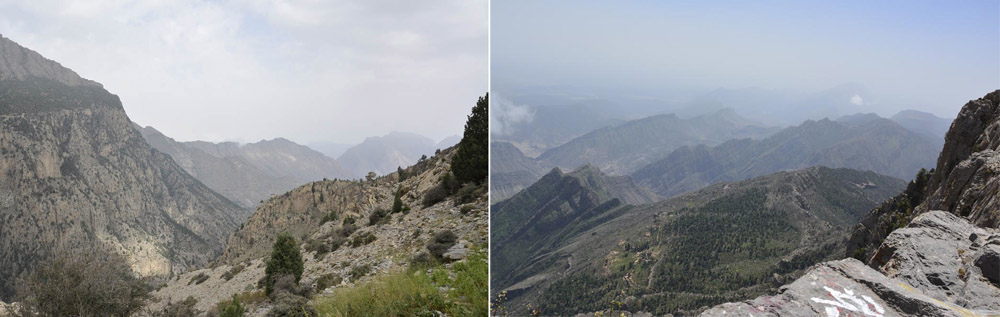 Looking north from the western skirts of Takht ridge, at 8,300 feet. copy