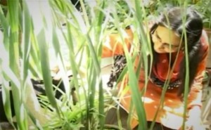 Perween Rehman among her plants (still from Rebel Optimist).