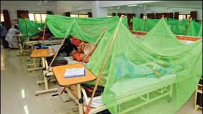 Karachi braves first dengue death of year