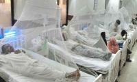 20 more dengue fever cases in Karachi