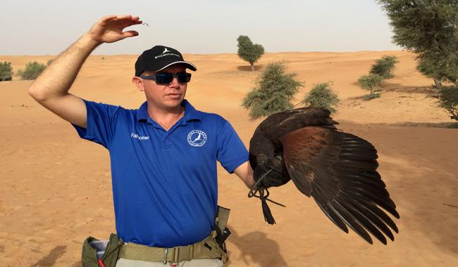 Dubai falconer modifies drones to give prey´s eye view