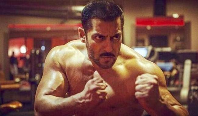 Watch salman khan film sultan trailer released