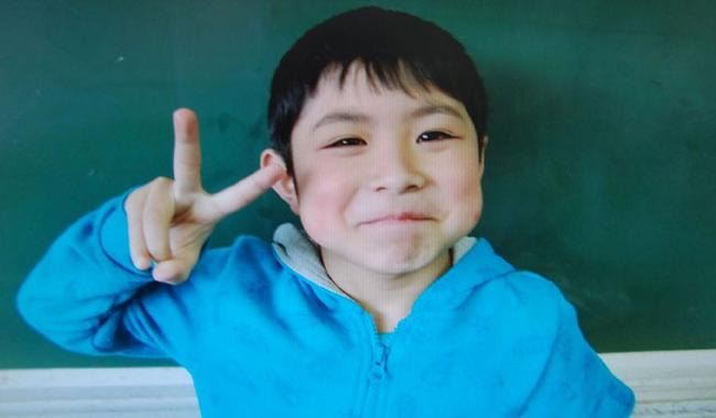Seven-year-old boy missing in Japan forest found alive