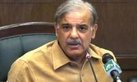 PML-N has obtained record mandate in AJK elections: Shahbaz