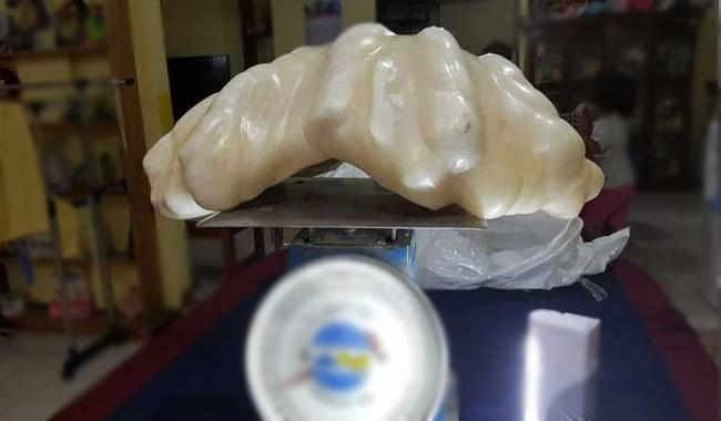 World´s largest´ pearl emerges in Philippines