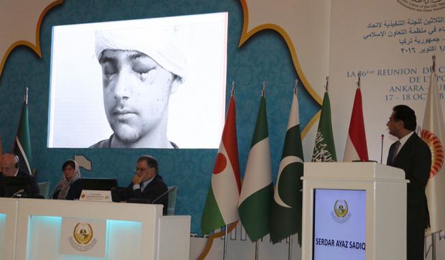 Kashmir dispute be resolved under UN resolutions: OIC