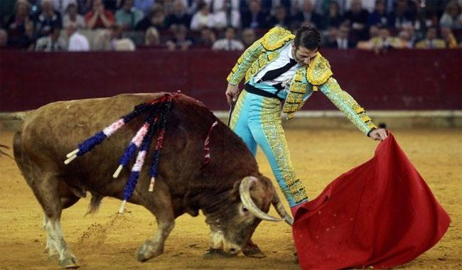 Spain´s top court cancels bullfighting ban in Catalonia