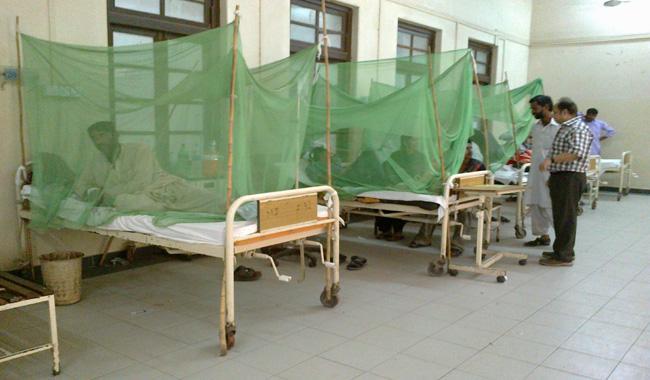 102 more dengue cases surface in Karachi