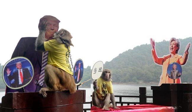 China's 'monkey king' picks Trump as next US president