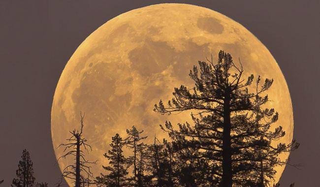 Pakistan to witness 'Supermoon' at sunset today